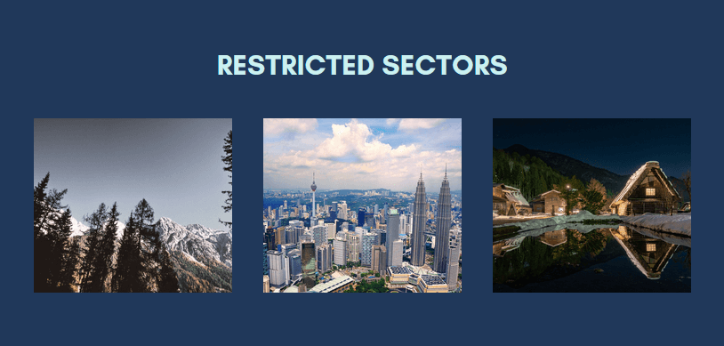 Restricted Sectors